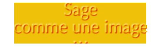 SagecommeUneImage